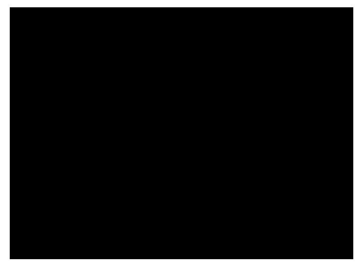 Crane Slide